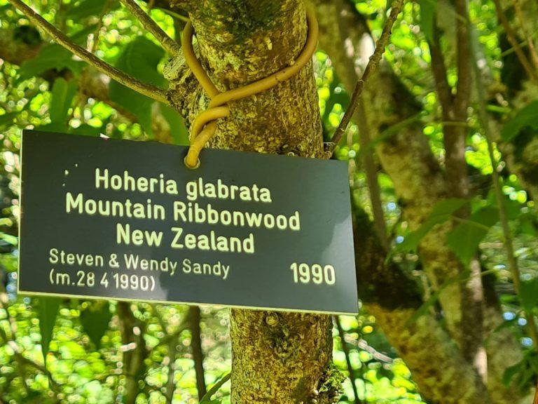 Memorial tree label